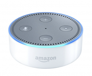 How I (almost) succeeded in getting an Echo to work well with my